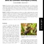 La pollinisation de l'Ophrys arachnitiformis (Orchidaceae) par les mâles de Colletes cunicularius (L.) (Hymenoptera, Colletidae) dans les Pyrénées-Atlantiques