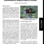 Premières données sur la présence de l'abeille asiatique Megachile (Callomegachile) sculpturalis Smith (Hymenoptera, Megachilidae) en Europe