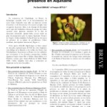 Contribution à la connaissance de Colletes halophilus Verhoeff (Hymenoptera, Colletidae) en France et confirmation de sa présence en Aquitaine