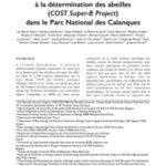 Compte-rendu des captures réalisées lors de la formation Européenne à la détermination des abeilles (Cost Super-B Project) dans le Parc National des Calanques